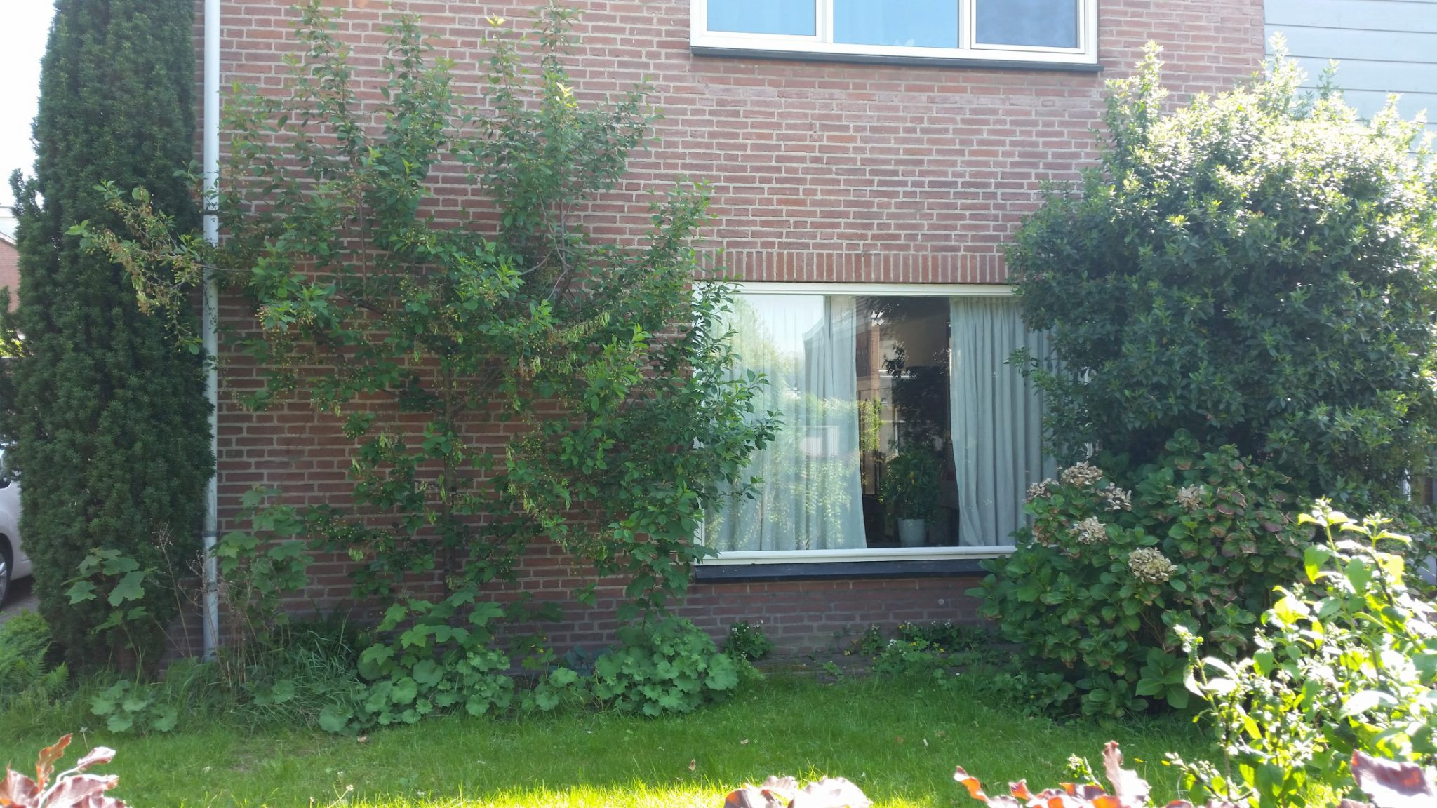 02. Schlatmaeckerstraat 9 te Nijmegen