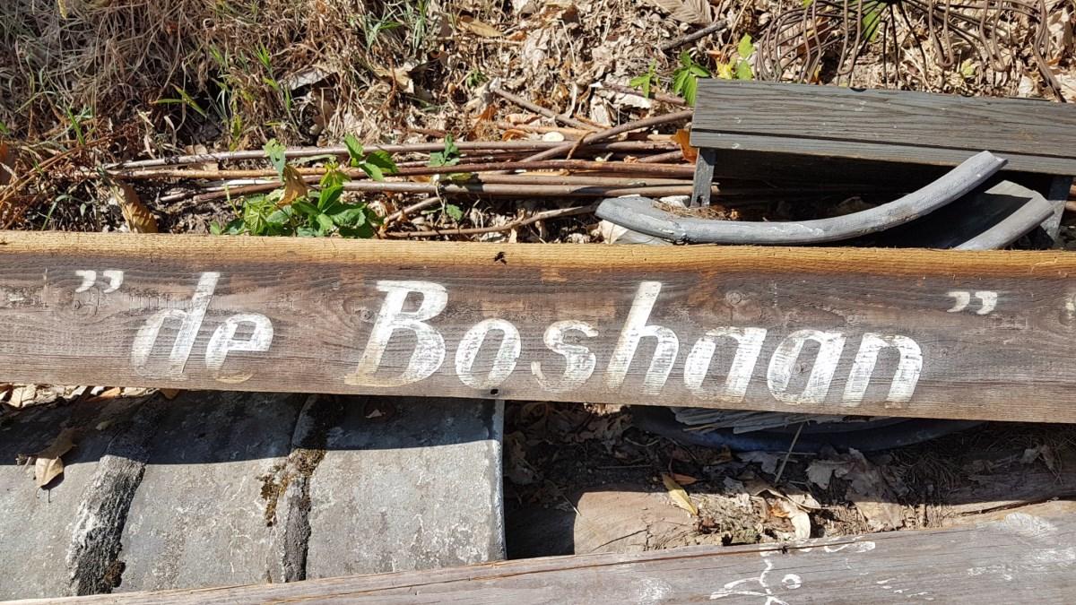 Boshaan-01